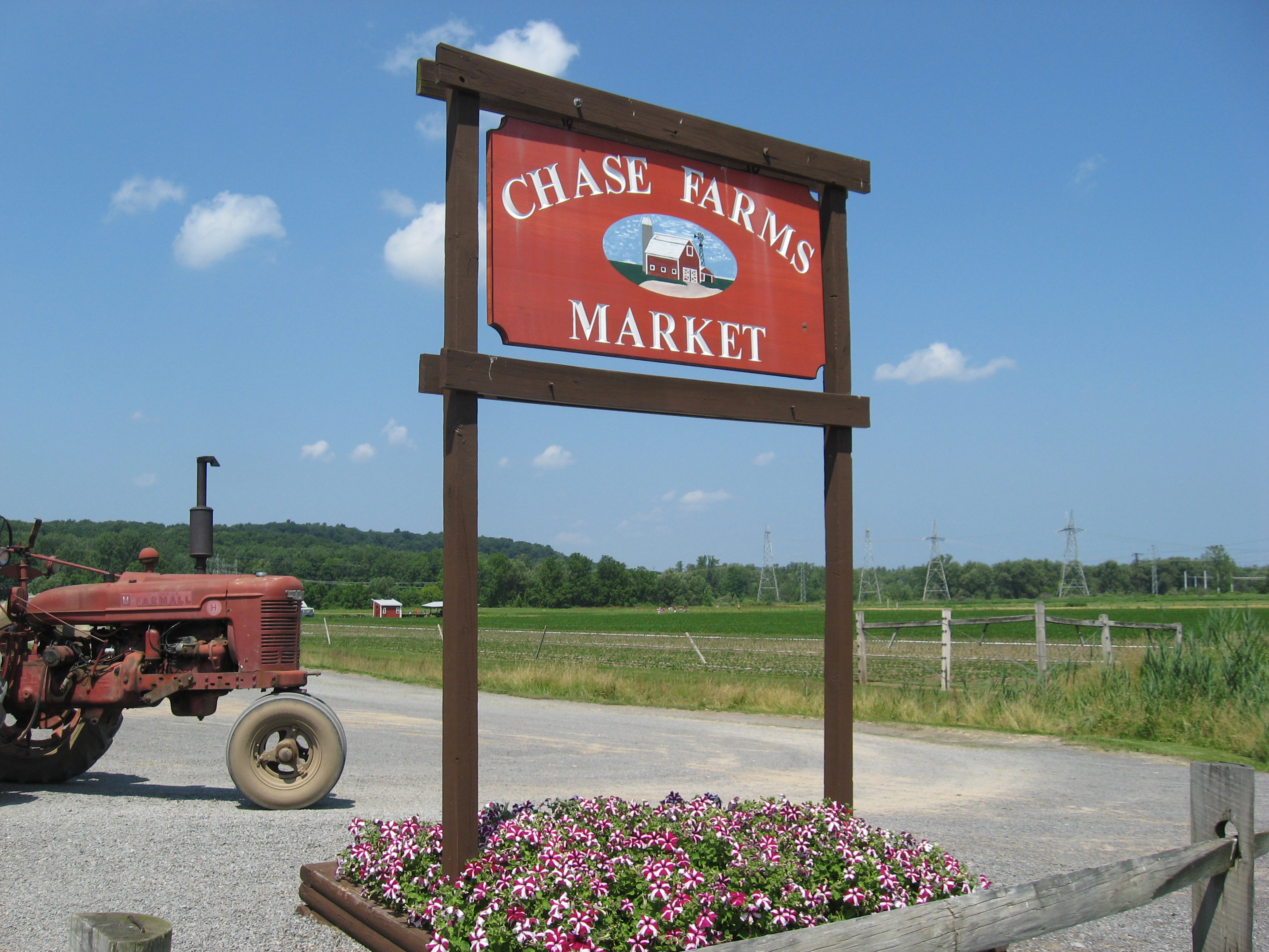 Welcome To Chase Farms!